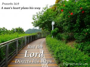 lord-directs-his-steps