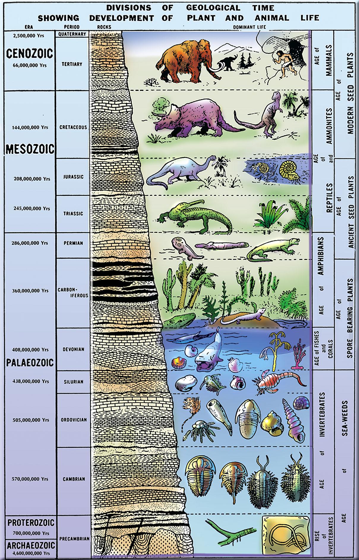картинки геологические эры пусть кажется делом